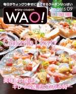 enjoy coupon WAO!